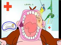 Dentista do macaco