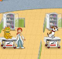 Daisy veterinária